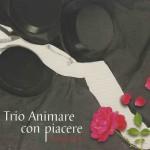 Trio Animare